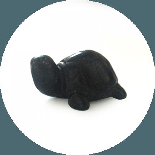 Energizirana želva