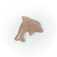 Obesek Delfin - Roževec