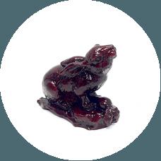 Živalski vodnik – zajec